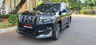 READY NEW  PRADO MODELISTA 2020
