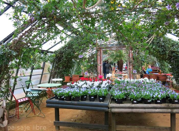 Vivero petersham nurseries en richmond paisaje libre for Vivero e invernadero
