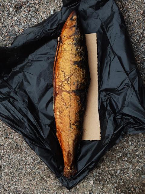 Ryba z Ładogi na podsklepiu (ok. jeziora Ładogi)