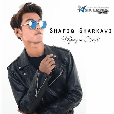 Shafiq Sharkawi - Pegangan Sepi MP3