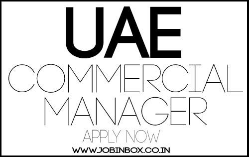 NICO INTERNATIONAL UAE Oil and Gas Commercial Manager Job Vacancy