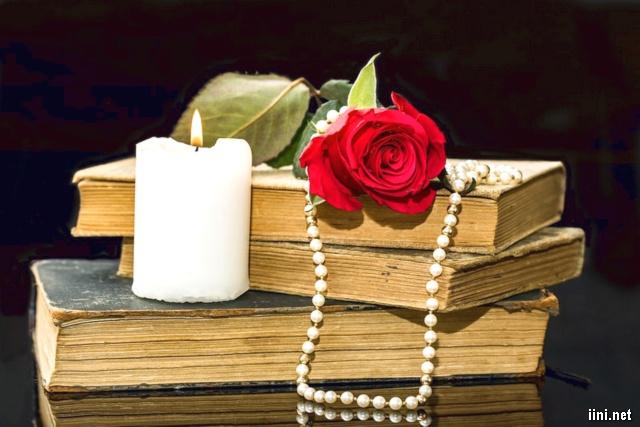 ảnh hoa hồng trên chồng sách cũ và cây nến