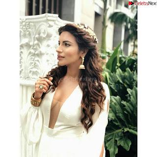 Shama Sikandar Beautiful Stunning Deep neck Gowns Bikini Inners 007.jpg