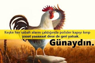 Sosyete Sözler Komik Günaydın Mesajları En Komik Doğum Günü Sözleri , En Komik Asker Sözleri Komik İyi Geceler Sözleri