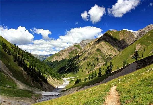 Hasil gambar untuk taman nasional swiss