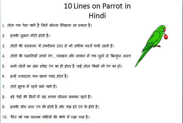 10 Lines On Parrot In Hindi Short Essay In Hindi