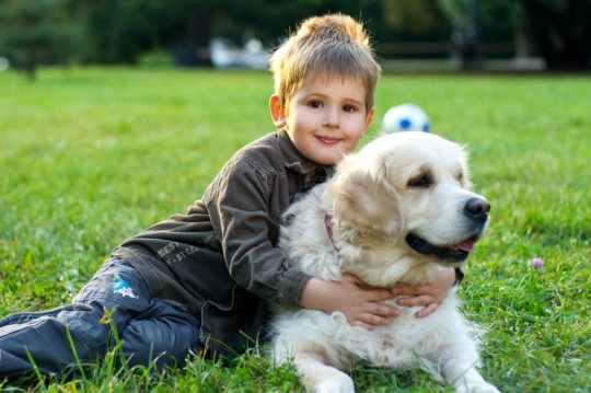 dog live longer: How To Help Your Dog Live Longer