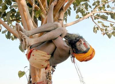 сознание, разум, личность, мышление, воображение, интеллект, коллективный, измененное состояние, смешной йог висит на дереве