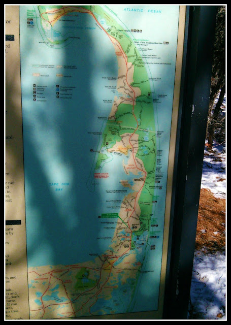 Great Island Trail: Cape Cod