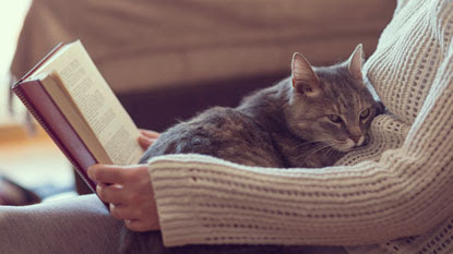 Top books for cat-lovers
