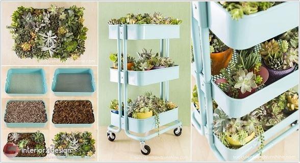 ideas for a small home garden 4
