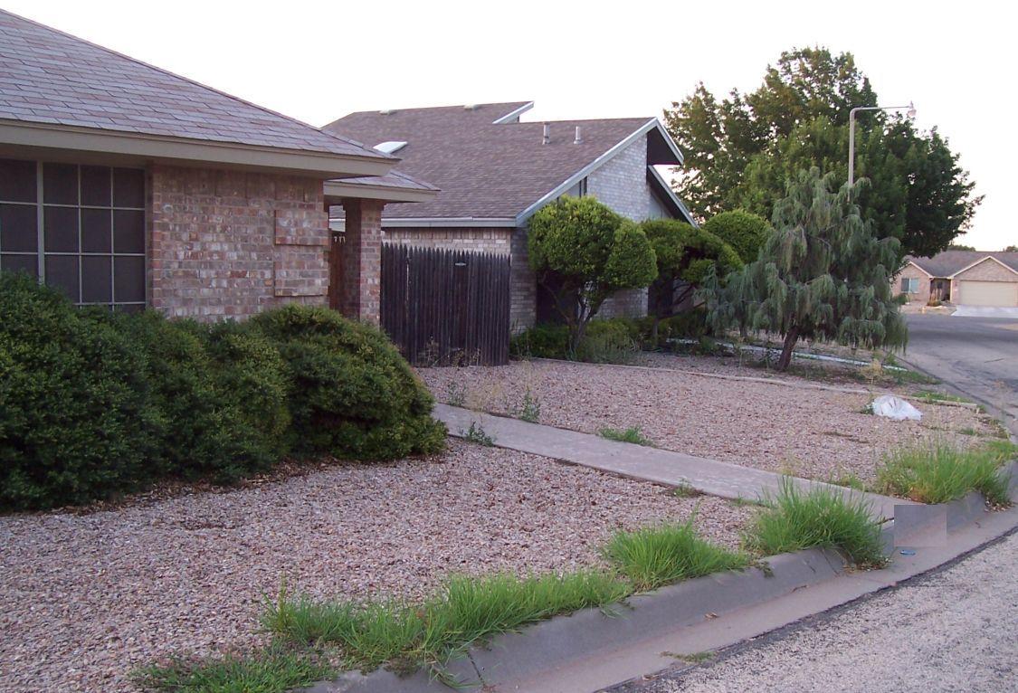 Happy Trails: A Stroll Around the Neighborhood on Low Maintenance Backyard  id=12761