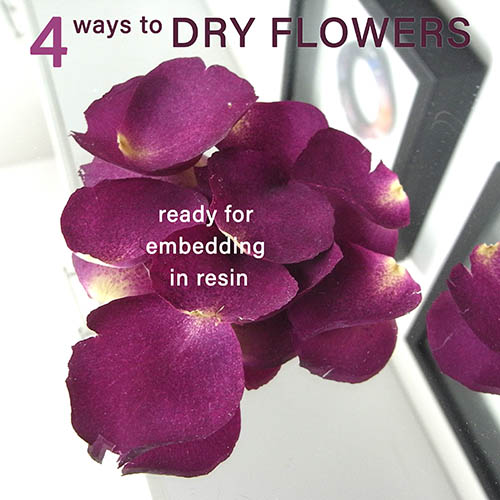 4 ways to dry flowers and petals ready for embedding in resin