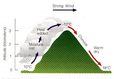 Angin Fohn dan Dampaknya