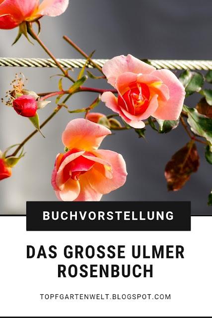 {Buchwerbung} Das große Ulmer Rosenbuch ist ein ausführliches Nachschlagewerk zum Thema Rosen, egal ob Beetgestaltung, Auswahl an Rosensorten und Kombination mit Stauden. Hier wird man bestimmt fündig. #rosen #garten #rosenbuch #buchvorstellung #topfgartenwelt