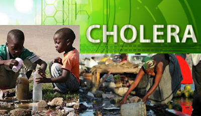 Image result for Death toll from Borno cholera outbreak rises to 44