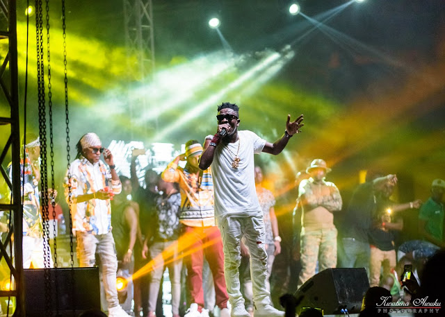 Shata Wale, Berla Mundi, Ebony, Asamoah Gyan & Others Win At 2017 People's Celebrity Awards