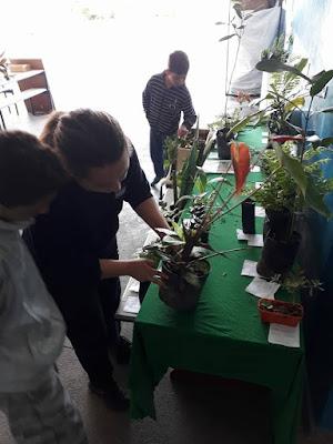 Escola da Família da Escola Yolanda realiza Ações pela Semana do Meio Ambiente