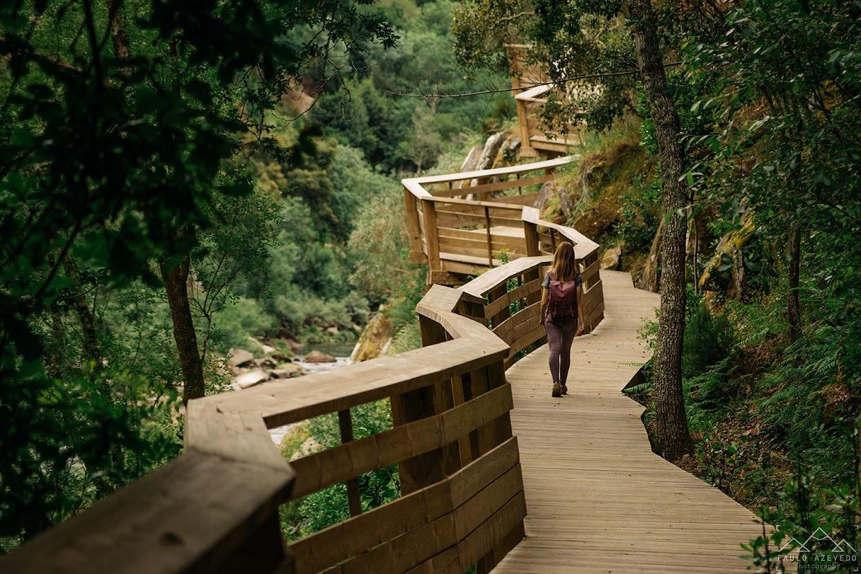 Caminhando pelos passadiços de madeira
