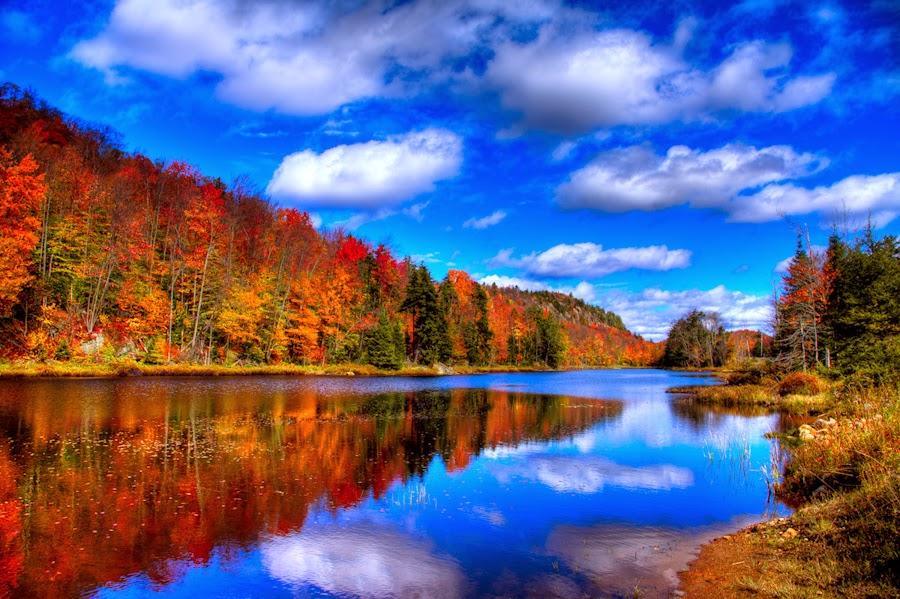 Adirondack Photography Bald Mountain Pond - An Autumn Capture