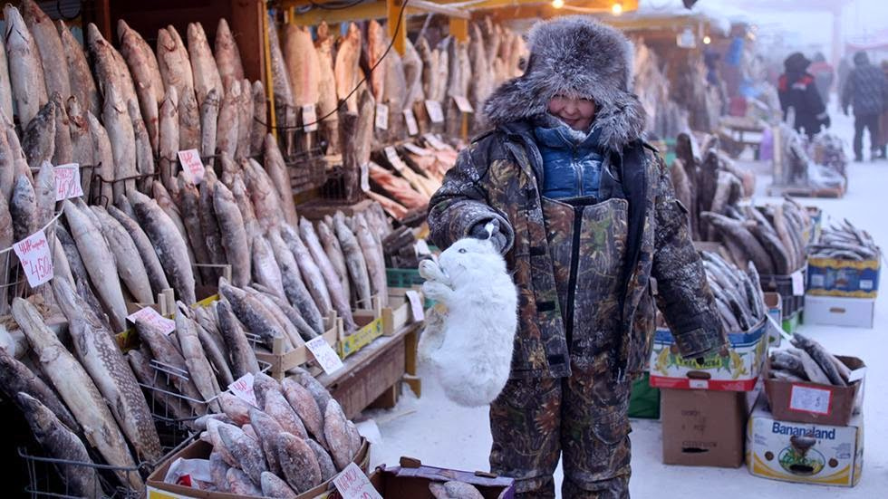 A local woman holds an arctic hare, on sale along with her stock of frozen fish in the central market of Yakutsk. - Welcome to The Coldest Place Inhabited By Humans on Earth
