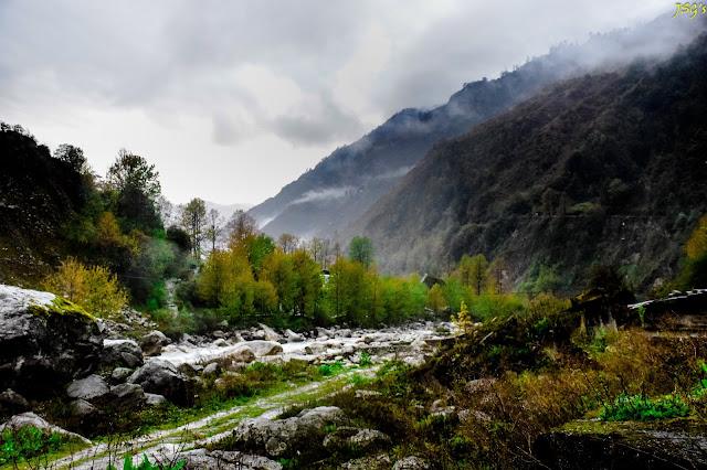 Greeneries along the Lachung Chu: Photo by Jayashree Sengupta @DoiBedouin