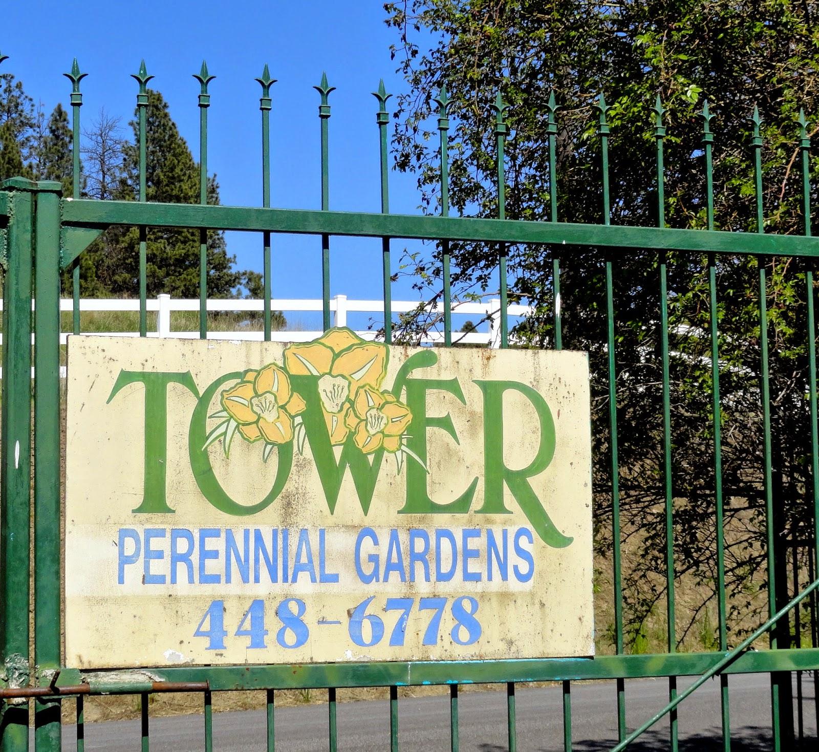 Tower Perennial Gardens: Danger Garden: One More Spokane Nursery Visit: Tower