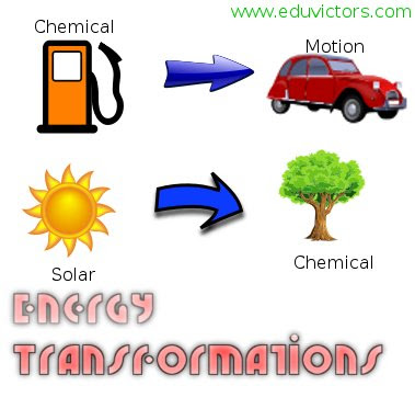 CBSE Class 9 - Science - Work Power and Energy (ENERGY TRANSFORMATIONS) - Worksheet