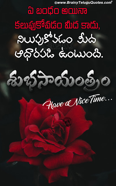 telugu quotes, inspiring words in telugu, best life quotes in telugum good evening telugu quotes,