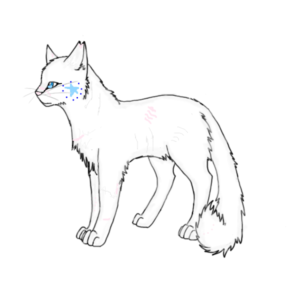 warrior cats coloring pages bluestar energy | Arts And Stuff!