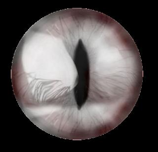 4th dimensional image 5qV6I4