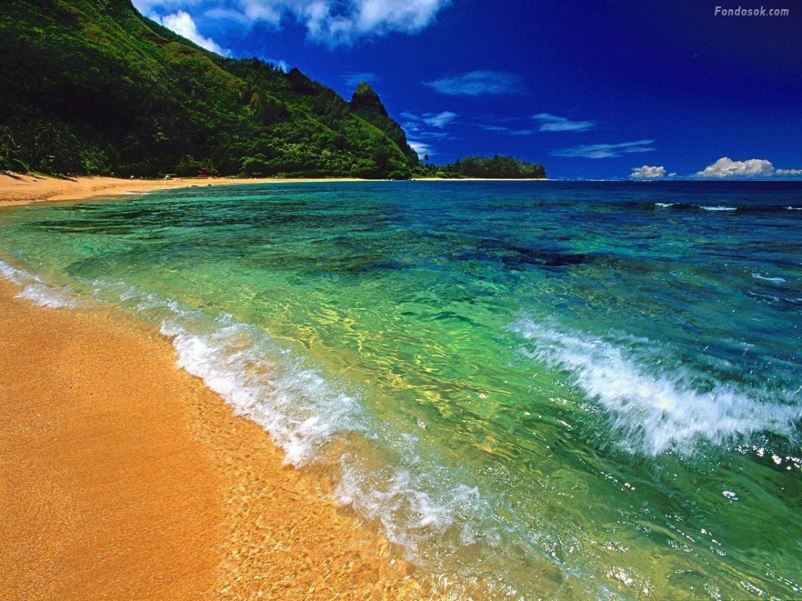 hd wallpaper: hd beach wallpapers 1080p