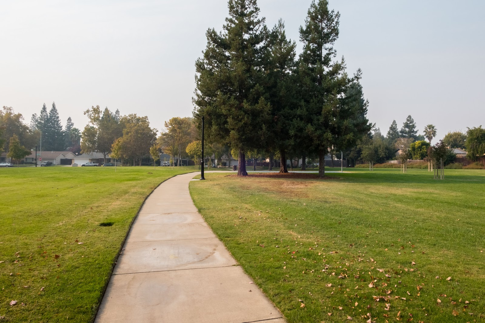 Naturetastic Blog: Smoke in Pleasanton, CA (From SF North Bay Wildfires)