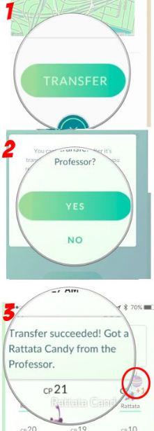 Mengenal Candy Pokemon Go dan Cara Mendapatkannya