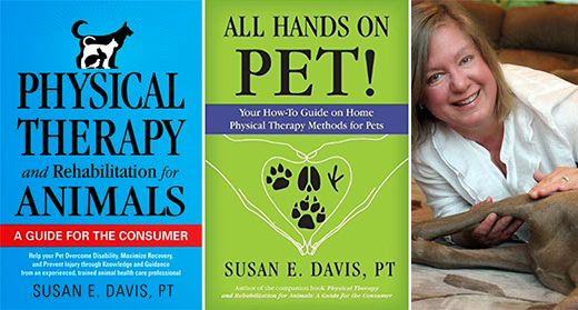 Physical Therapy for Pets