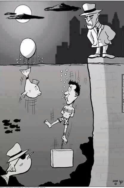 Funny Man Fish Gangster Assassination Cartoon Joke Picture