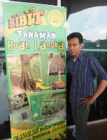 admin bibit durian bawor