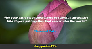 """Do your little bit of good where you are; it's those little bits of good put together that overwhelm the world.""  ― Desmond Tutu"