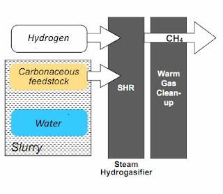 Synthetic natural gas made from wet carbonaceous feedstock such as lignite