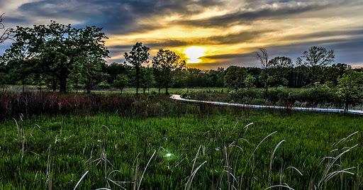 Cherokee Marsh in Madison WI