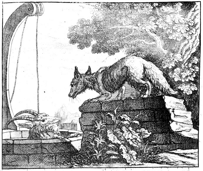 And Cat Fable Fox