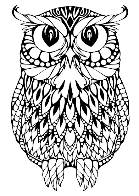 Ornate Owl Adult Coloring Page Umiddot Photos