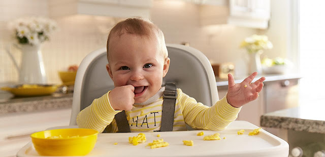 http://www.rosaforlife.com/2018/03/when-can-my-baby-eat-eggs.html