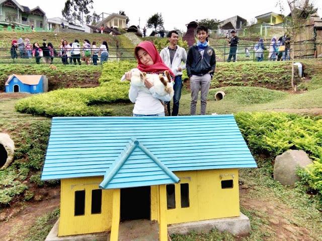 rumah kelinci di taman kelinci