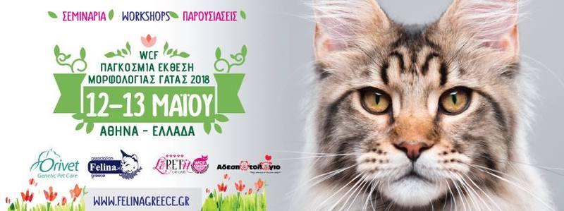 Παγκόσμια έκθεση Γάτας / Athens wcf world show – 12 & 13 Μαΐου, Μαρκόπουλο