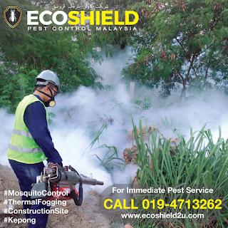 Fogging Construction Site - Pest Control Selangor Malaysia