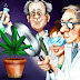 There Are Now Officially Over 100 Scientific Studies That Prove Cannabis Cures Cancer