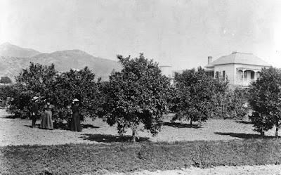 Fotografías antiguas de Hollywood, siglo XIX