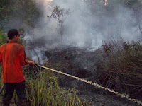 Land and Forest Fires in Indonesia