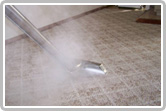 http://www.friendswoodcarpetcleaningtx.com/steam-cleaning/carpet-cleaners.jpg